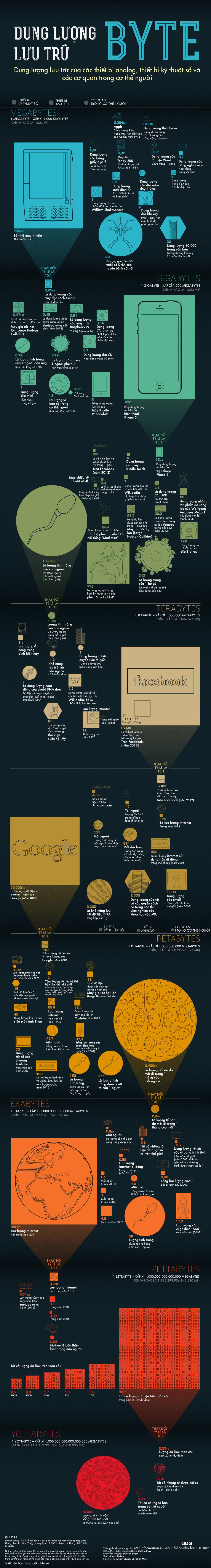 Infographic - Các đơn vị lưu trữ dữ liệu trong thời đại kỹ thuật số