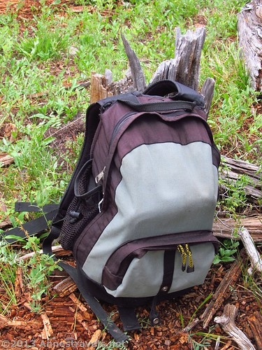 A daypack in the forest – we still use daypacks, even though most of us prefer waist packs.