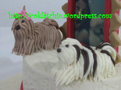 Kue Ulang Tahun shih tsu dengan frame foto – RENNY