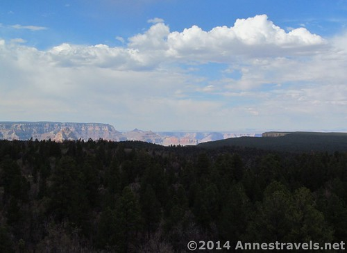The view of the Grand Canyon from the Grandview Lookout Tower, Kaibab National Forest, Grand Canyon National Park, Arizona