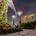 Gardens By The Bay, Singapore by eric_hevesy
