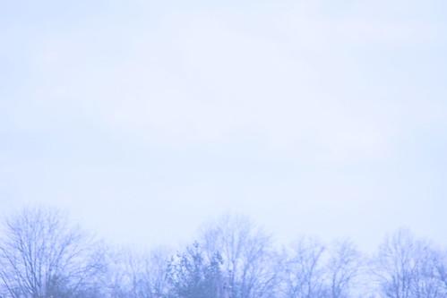 IMG_7794 by rajkumarneelappa