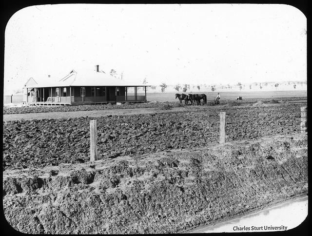 Settler's Home - Murrumbidgee Irrigation Area (MIA)