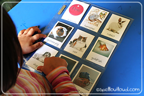 Pet Themed Word Cards (Photo from Spell Outloud)