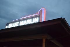 004 Blue Marlin