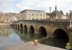 Jaspa at the Town Bridge, Bradford-on-Avon, Wiltshire