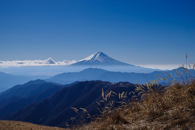 白谷ノ丸付近で仰ぐ富士山