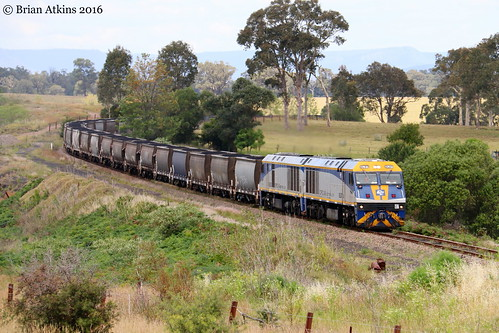 IMG_8574 EL57 EL56 Gillieston Heights AS166 17.11.16_1