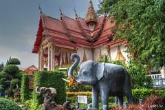 Phuket (TH)