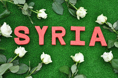Lives lost in Syria