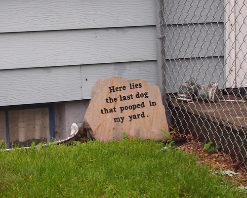 Here lies the last dog that pooped in my yard.