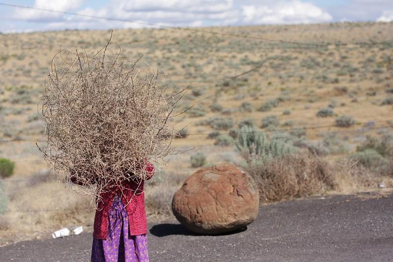 tumbleweed fun