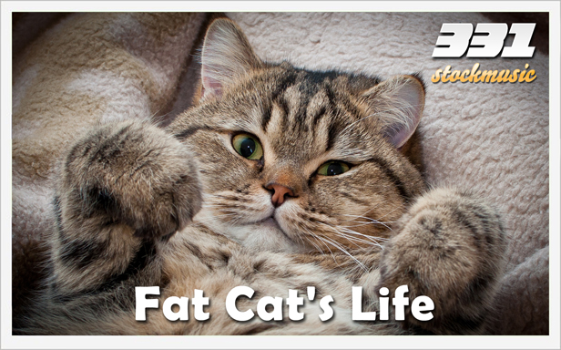 Fat Cats Life 01