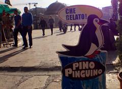 Pino pinguino (che gelato!)