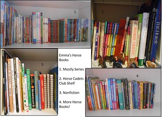 Colection of Horse Books