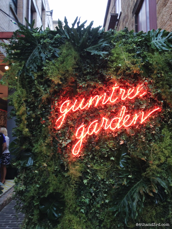 Gumtree Garden - The Rocks, Sydney (feeding my design addiction)