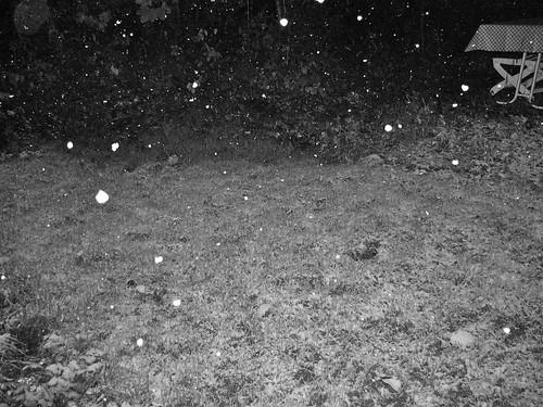 es_schneit2