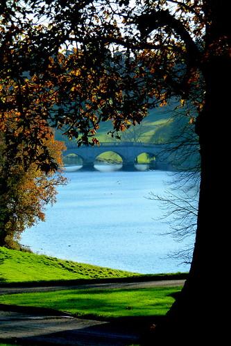 bridge england english river hatfield hertfordshire riverlea herts brockethall brocketpark