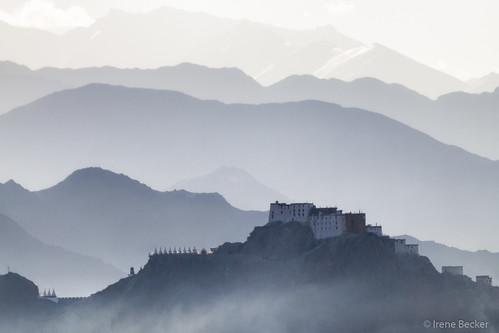 morning autumn sunlight india mountain sunrise buddhist buddhism monastery himalaya ladakh gonpa imagesofindia ommanipadmehum northindia ladakhi littletibet indianimages sheymonastery greathimalayas lastshangrila irenebecker irenebeckereu buddhismphoto moonlandonearth