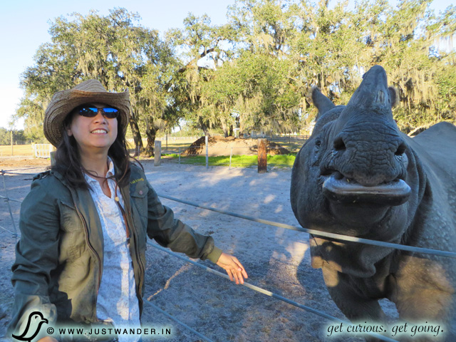 PIC: Maya of JustWander.in feeding an Indian Rhino