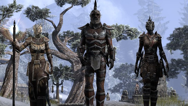 The Elder Scrolls Online on PS4