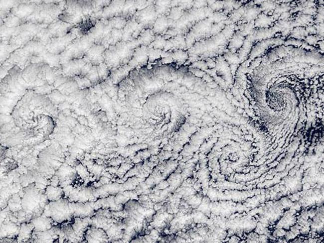nature-patterns-028