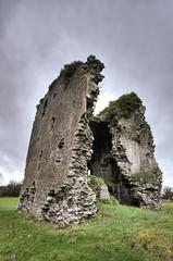 Kinnefad Castle