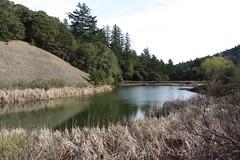 loch(0.0), nature reserve(1.0), wetland(1.0), floodplain(1.0), reservoir(1.0), river(1.0), bank(1.0), lake(1.0), body of water(1.0), tarn(1.0), wilderness(1.0), pond(1.0), waterway(1.0),