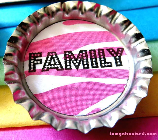 Family (7)