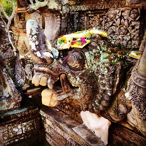 1000 year old temple turtle with offerings on its head.