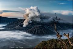 Java - Indonésie -