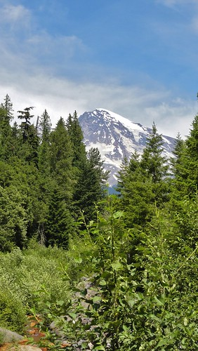 Mount Rainier from Kautz Creek.