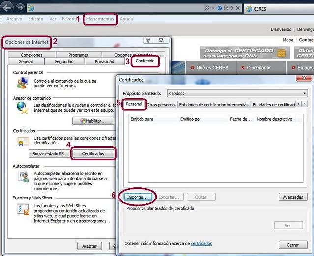 Acceso asistente importación IE