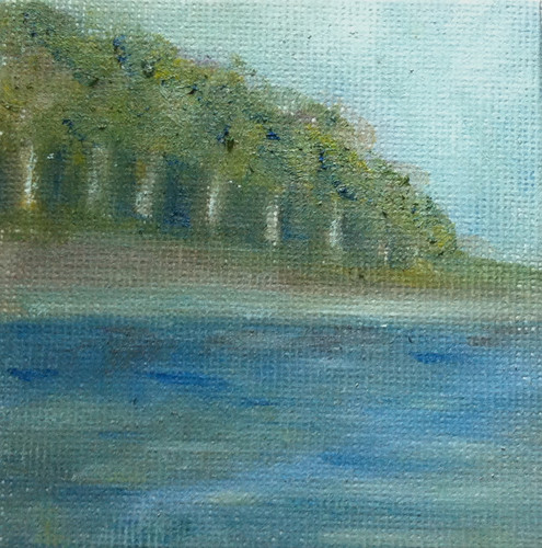Woods and Shore (Mini-Painting as of August 21, 2013) by randubnick