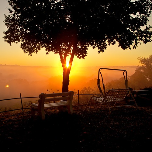 morning light sun color tree grass leaves fog sunrise bench landscape kentucky ky swing louisville hopewell daybreak sunstars