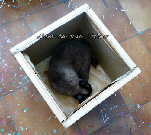 A caixa que achei na rua