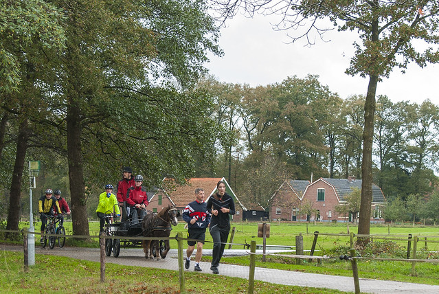 2013-10-27 Minimarathon Kotten