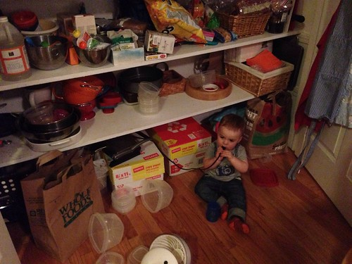 Elliott in Pantry