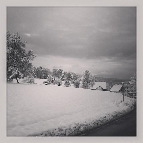 First snow ❄❄