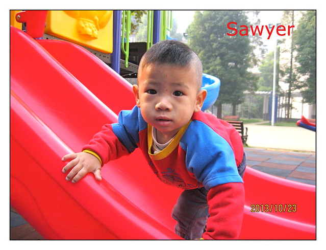 Sawyer-Blog