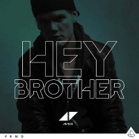 Avicii – Hey Brother