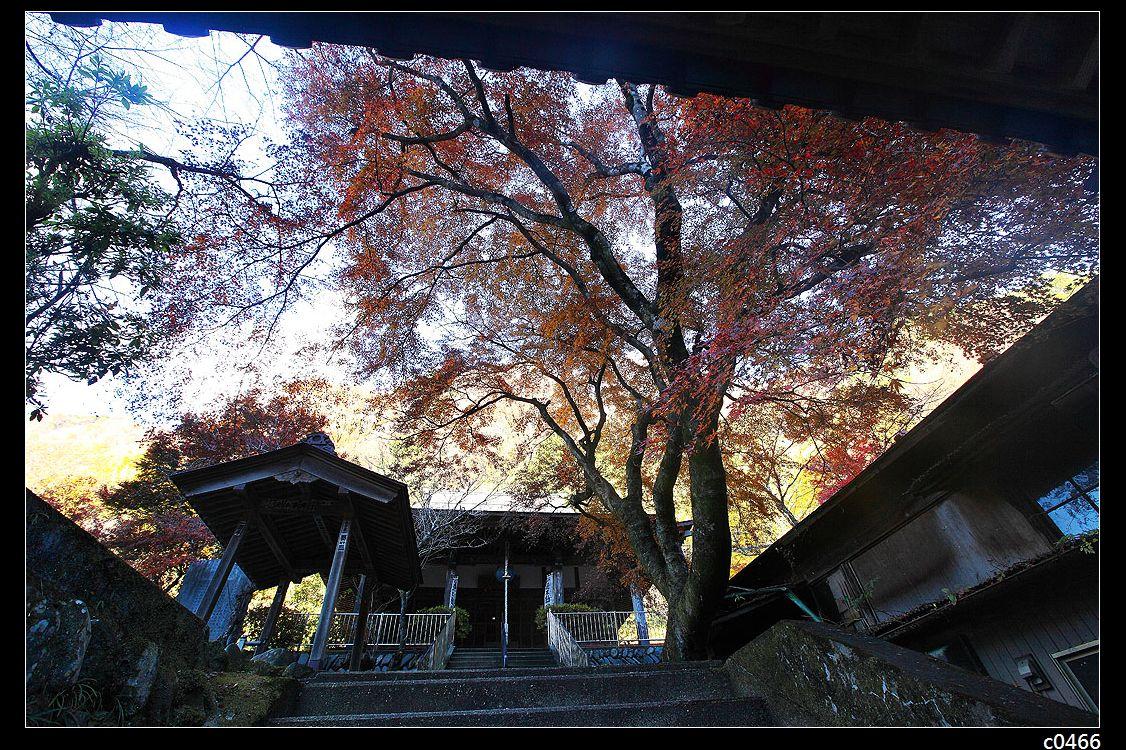 日本红叶之旅-袋田瀑布风景区