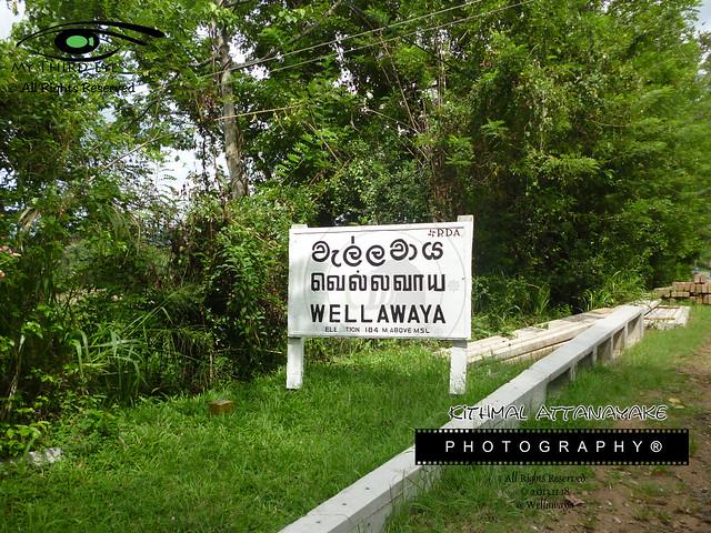 Wellawaya