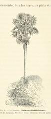 Image taken from page 567 of 'Lettres sur le Congo. Récit d'un voyage scientifique entre l'embouchure du fleuve et le confluent du Kassaï. [With Maps, etc.]'