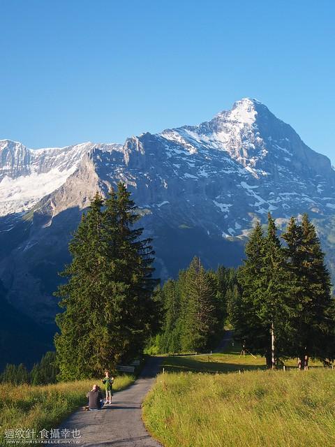 Grindelwald: Bergus Bort