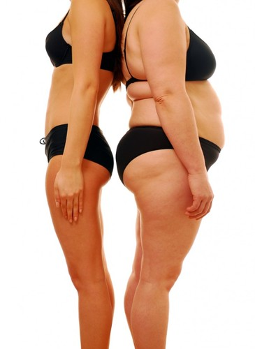 free weight loss diets