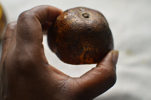 Nigerian June Plums