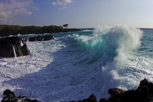 hawaii surf waves endoftheworld
