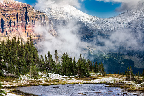 park trees summer white snow mountains green ice nature pine clouds america forest landscape outdoors nationalpark montana unitedstates cloudy events dramatic nobody glacier trail national glaciernationalpark wilderness peaks overlook majestic rugged hiddenlake conifers browning
