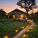 Small photo of &Beyond Ngala Tented Camp